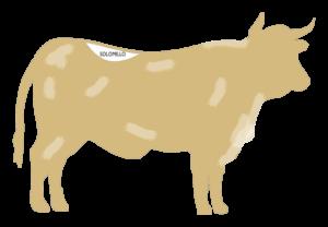 Localización del Solomillo