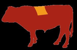 Lomo Alto Vaca